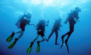 Scuba Diving Certification Miami PADI 5 Star Dive Center