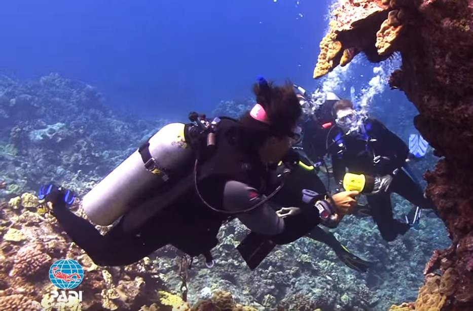 PADI Open Water Training Dives