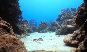 grand-cayman-dive-resorts-all-inclusive