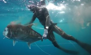Spearfishing Tips for Beginners