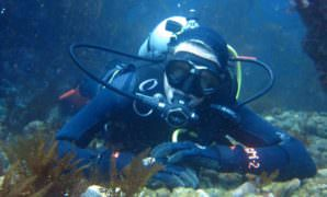 Scuba Diving Certification Santa Barbara